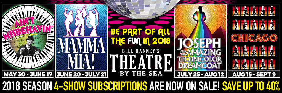 Image result for theatre by the sea 2018