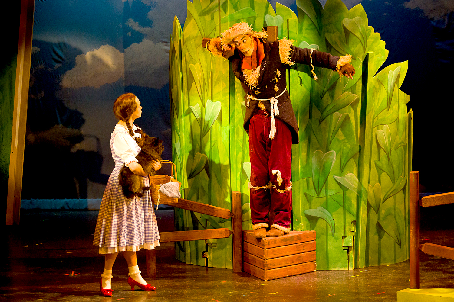 the wizard of oz theatre by the sea. Black Bedroom Furniture Sets. Home Design Ideas